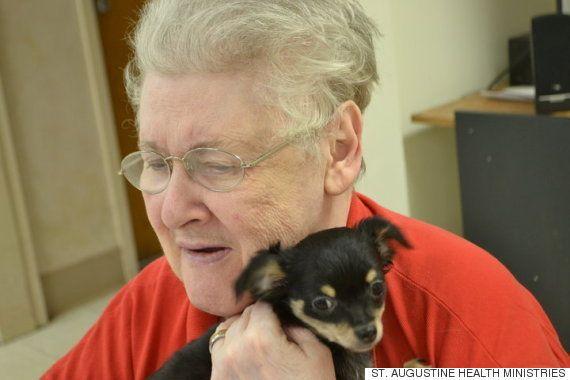 迷子だった子猫のオレオ、いまは養護施設でこんなに愛されているよ