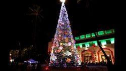 クリスマス・シーズンに考える、2014年の寄付市場の行方