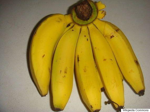 バナナが消える!? 強力なカビの登場で危機的状況に
