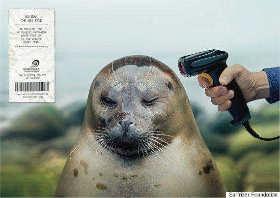 海の動物に「銃」が突きつけられ...人間の大量消費に警鐘を鳴らす写真