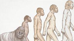 驚くほど多くのアメリカ人が未だに進化論に対して否定的