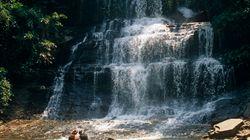 ガーナ・キンタンポの滝で水遊びしていた高校生に大木、少なくとも18人が死亡
