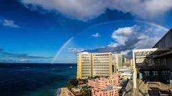 ハワイのお正月恒例行事に見る「ハイブリディティ」とは?―「ハワイと日本、人々の歴史」第9回