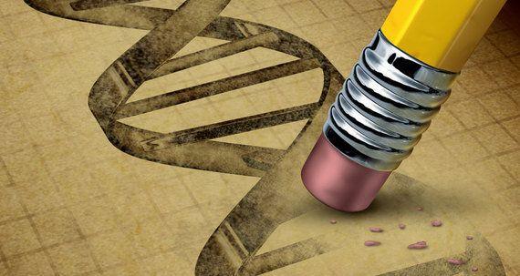 ヒトの生殖系列のゲノムを編集すべきでない