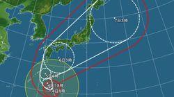 台風18号、樹木が根こそぎ倒れる猛烈な風。交通機関の混乱必至