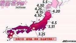 桜の開花だより 3月22日は次々と届きそう