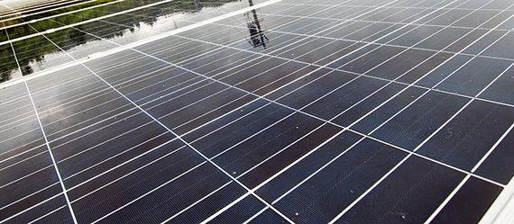 九州電力の再生可能エネルギー接続保留に対しWWFが声明