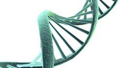 遺伝子検査と消費者保護