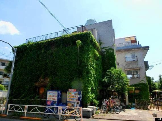 高級住宅地に突如現れる緑の館「みどり荘」は、新鋭クリエイターが集結する夢のシェアオフィスだった!