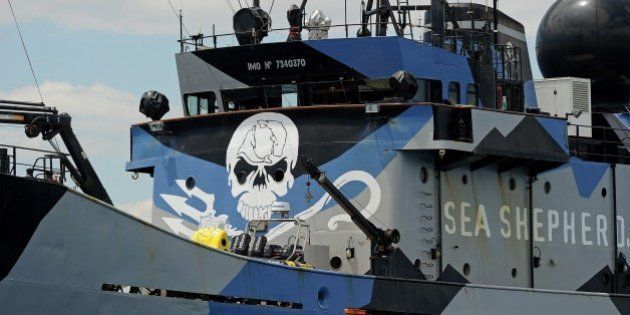 The ship 'Steve Irwin' from the fleet of environmental activist group Sea Shepherd sits at anchor in...
