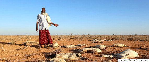 ソマリアで深刻化する干ばつ 国際社会は26万人が死亡した2011年の失敗を繰り返している