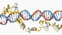 血液のマイクロRNA診断開発が始動
