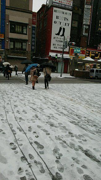 東京に大雪警報