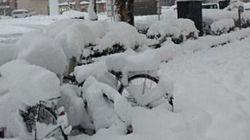 東京は20年ぶりの大雪、このあと大雪の中心は北へ