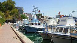 黒海の漁師たちと原発を語る~トルコ・シノップにて