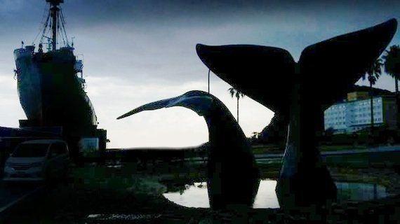 イルカとクジラ問題に向き合う。日本人初の本格ドキュメンタリー映画を撮る女性監督の思いは