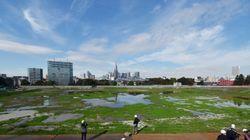 ビジョン・戦略・長期計画 つくるたびに約5,000万円もかかる東京都のプラン策定、意義は