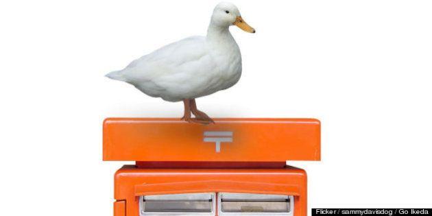 アフラックが日本郵政と提携