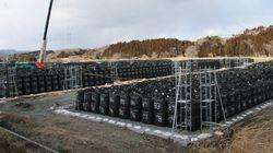 「家の前に除染廃棄物」福島の現状を案内したら......