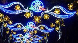 電飾輝くベトナム・ホーチミン市、人々は国内の原発計画を知らない