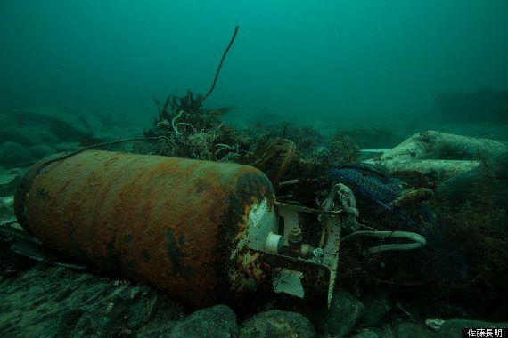 震災から3年。南三陸の海に生命が戻り、色が蘇った