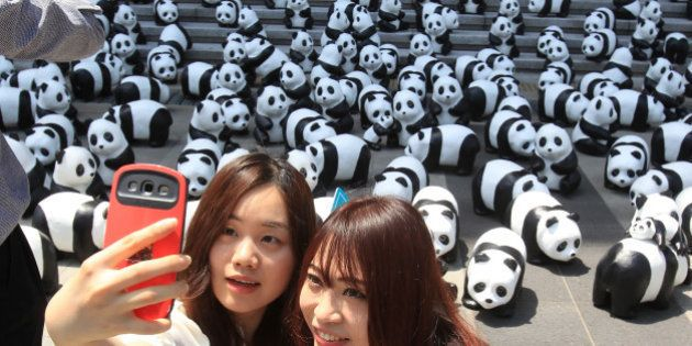 SEOUL, SOUTH KOREA - MAY 23: People take a 'selfie' photograph near Pandas on May 23, 2015 in Seoul,...