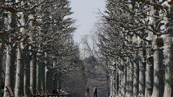啓蟄だが、虫が出るほど暖かくない 関東周辺は冬の寒さが戻る