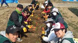 震災から3年半「耕作放棄地」を復活させ、作物をつくっていきます