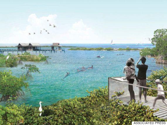 狭い水槽に人間の目...ボルチモアの水族館は決意した。イルカのために。