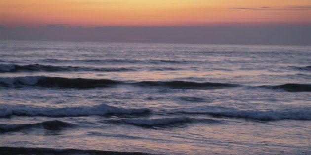 浜通りの心をめぐる空想