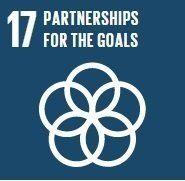 「私たちの世界を変革する」持続可能な開発目標ってどんなもの?(第一回:目標17)