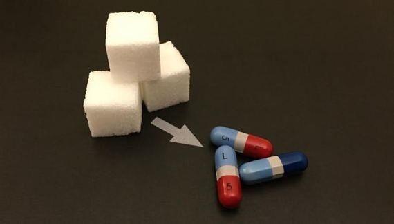 化学物質を生産する微生物を作り出す20nがY