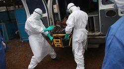 【エボラ出血熱】道端で横たわっていた犠牲者を遺体袋に回収しようとしたら...(閲覧注意・動画)