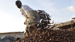 エボラ出血熱でチョコレートが値上がり懸念 代替品への切り替えの動きも