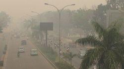 インドネシアの煙害、周辺国をも襲う プランテーション開発による影響