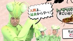 「香川照之の昆虫すごいぜ!