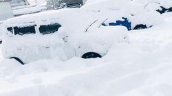 【大雪】福井の国道で200台立ち往生、北陸はいま...(画像)