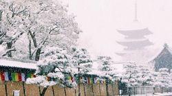 雪の京都 嗚呼、なんて美しいんだろう【画像】