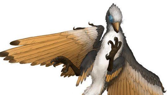 原始鳥類の化石を福井県で発見 全身骨格は国内初【画像】