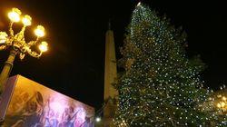 バチカンの大聖堂 クリスマスツリーとライトアップ【画像】