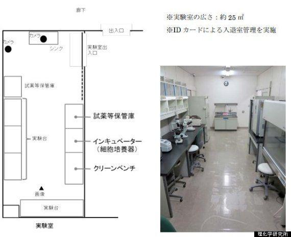 小保方晴子氏、STAP細胞つくれず