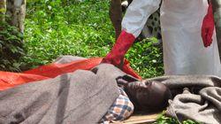 エボラ出血熱の流行が、ゲイへの憎悪生む「感染は同性愛への神の罰」