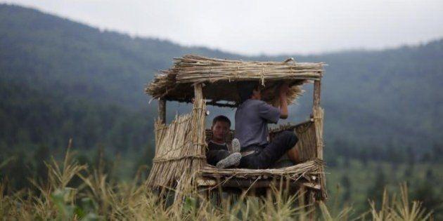 北朝鮮、干ばつで子供に病気や栄養失調広がる ユニセフ発表