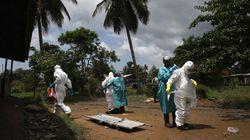 エボラ出血熱、死者4000人を超える WHO集計