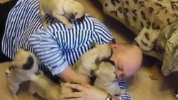 「大好き!」6匹の子犬に愛されすぎるおじさんが羨ましい【動画】