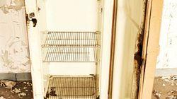 米国最古:今も動く「85歳の冷蔵庫」