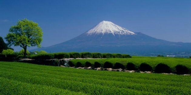 富士山とエベレストが「姉妹山」に 野口健さんらが記者会見