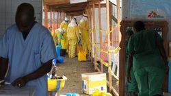 エボラ未承認薬「ZMapp」、サルで治療効果を確認