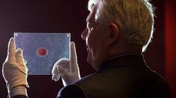 【史上最高額】英領ギアナ切手が9億7000万円で落札