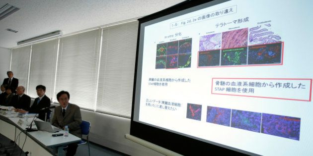 Shunsuke Ishii, a molecular geneticist at Riken and head of the research investigation committee, center,...